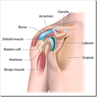 Shoulder Pain Amarillo TX Rotator Cuff Injury