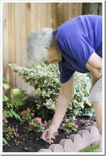Back Pain Greenville SC Gardening